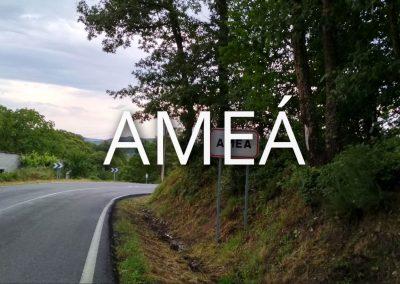 amea-1